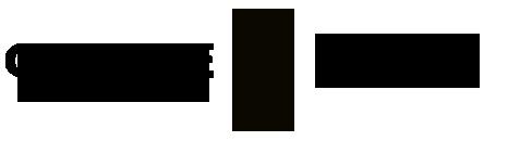 gente-scholar-logo